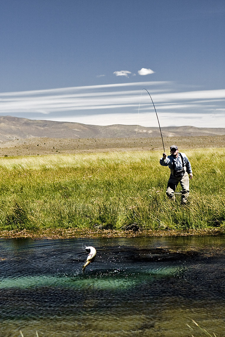 DAP sport Fly Fishing Argentina Arroyo Pescado Patagonia River Guides trout